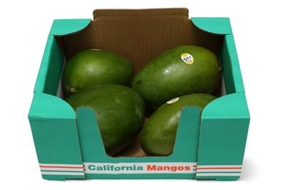 カリフォルニアマンゴー アメリカ産 1箱