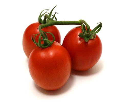ローマトマト 一房