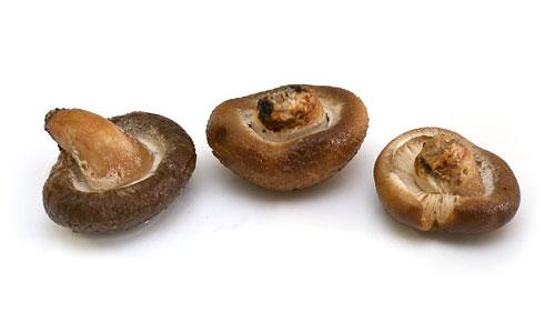 国産どんこ 乾燥しいたけ 戻した椎茸