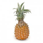 snack_pine