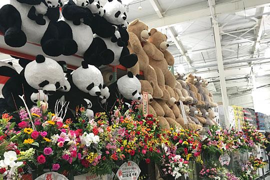 コストコ岐阜羽島倉庫店オープン クマとパンダとお花