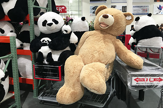 コストコ岐阜羽島倉庫店オープン 巨大クマとパンダ