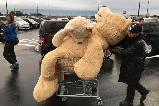 コストコの巨大クマを購入した人 運んでいる