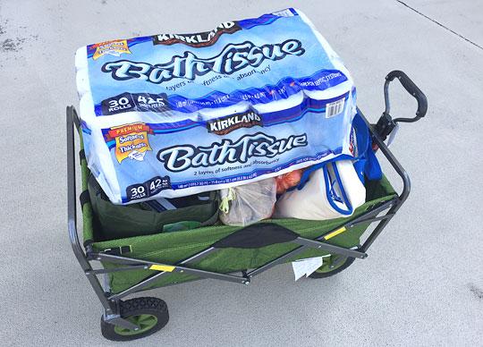 CHARIOT 折りたたみワゴンカート コストコの商品を積んだ
