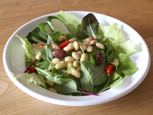 果実堂 美味しい発芽大豆を使ったグリーンサラダ