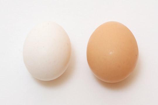 スーパーの卵との比較