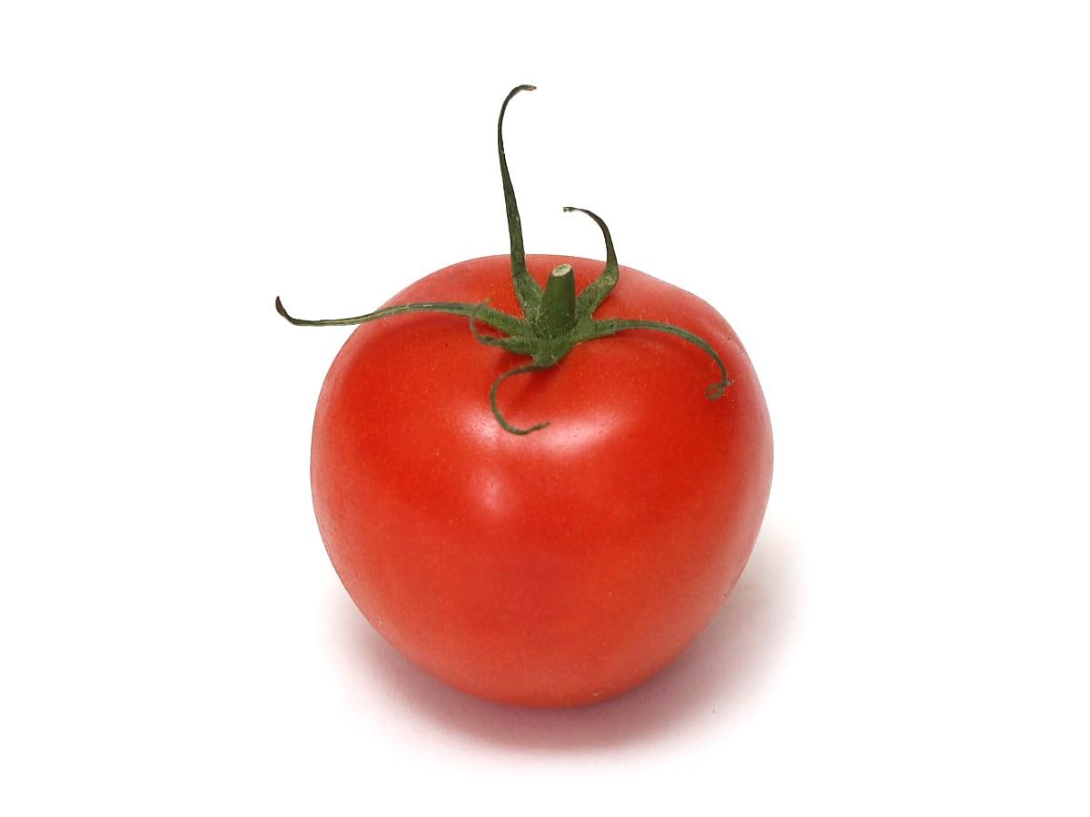 カナダ産 房付トマト 1.8kg 1個