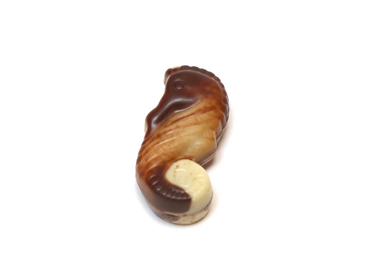 ギリアン テンプテーション ベルギーチョコレートアソート 1個(開封中身) マーブル模様でシーホースを象ったチョコレート