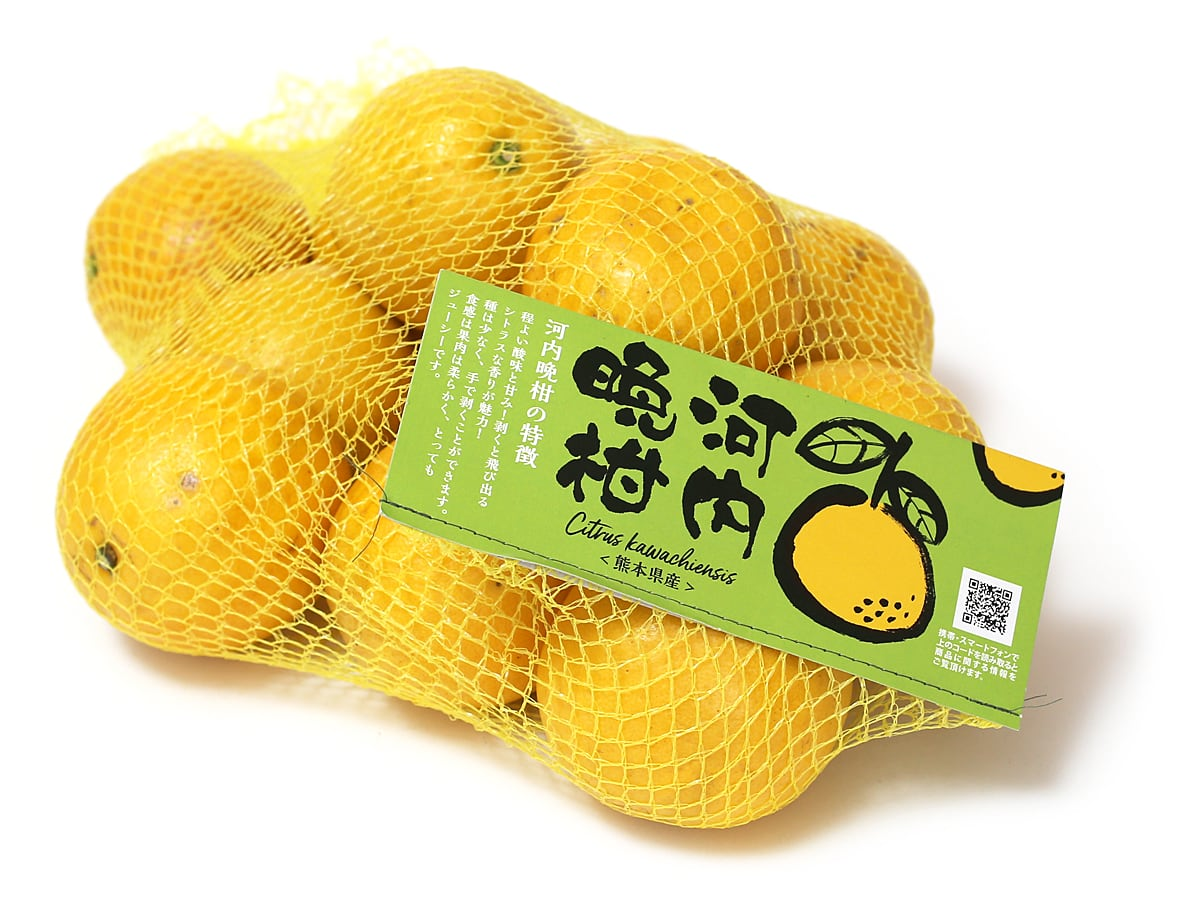 河内晩柑(かわちばんかん) 3kg