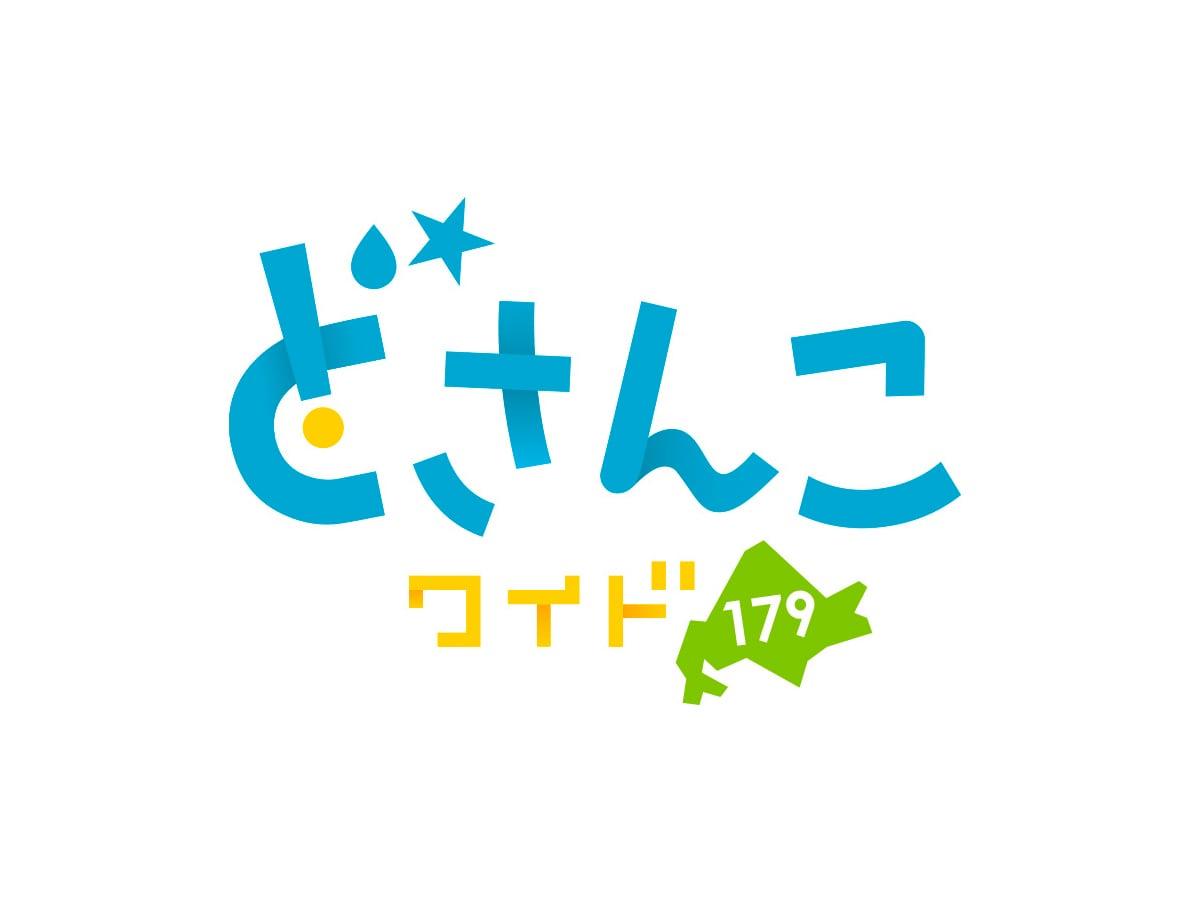 STV「どさんこワイド179」